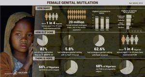 FGM2-01